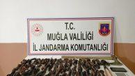 SEYDİKEMER'DE KABLO HIRSIZLARI YAKALANDI